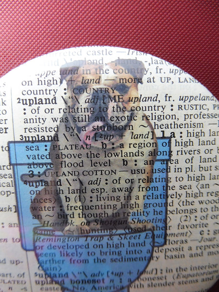 Bulldog #5 Fridge Magnet No.677