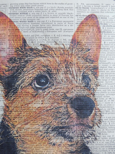 Norwich Terrier Dog Print No.926