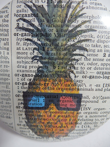 Pineapple Fridge Magnet No.8, botanical