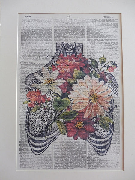 Heart and Lungs #1 Anatomy Wall Print No.933