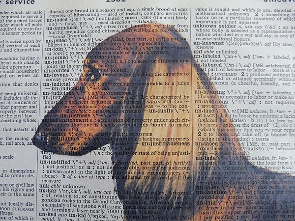 Dachshund Dog #14 Wall Print No.804