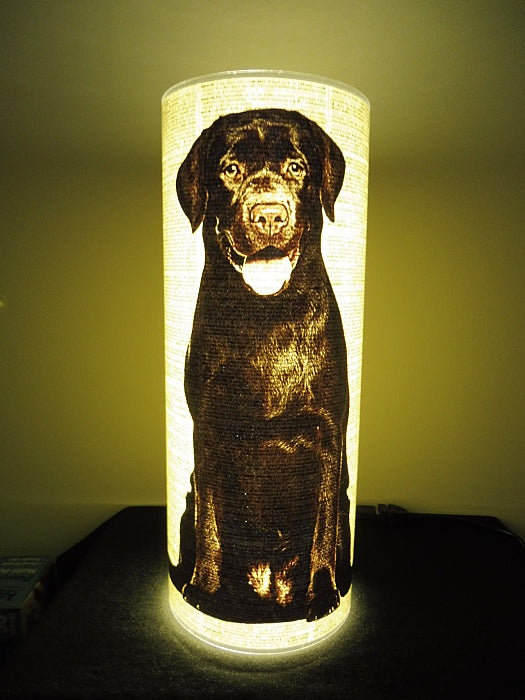 Labrador Chocolate Dog #3 Paper Lantern No.850