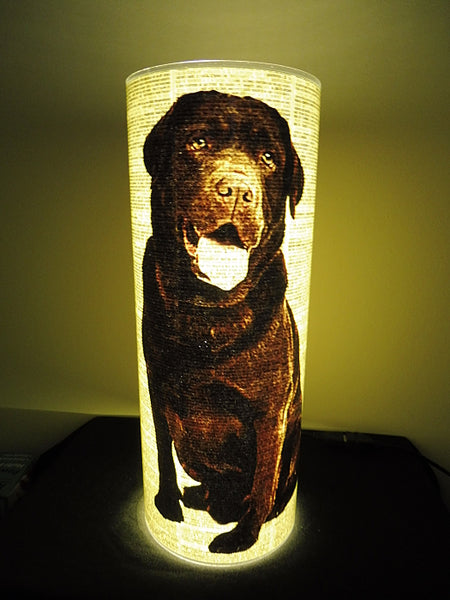 Labrador Chocolate Dog #2 Paper Lantern No.849