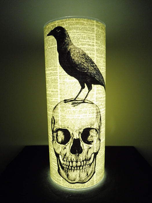 Skull and Crow Paper Lantern No.316, gothic