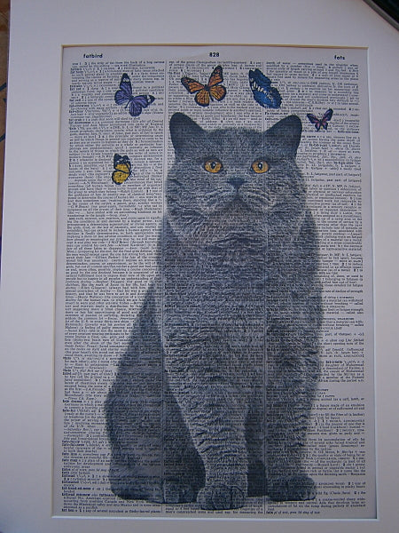 British Shorthair Cat #3 Print No.92