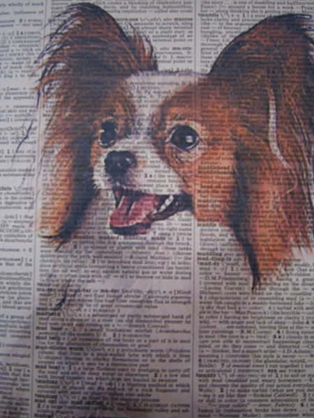 Papillon Dog Print No.113