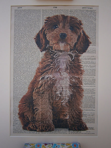 Cockapoo Dog Print No.138