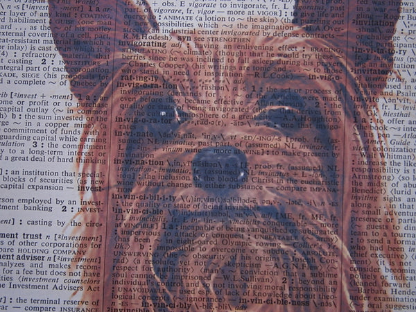 Australian Silky Terrier Dog #4 Wall Print No.164