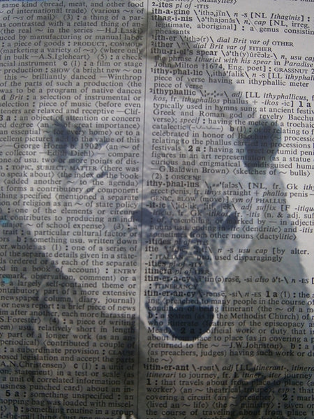 Polar Bear Print No.159, animals