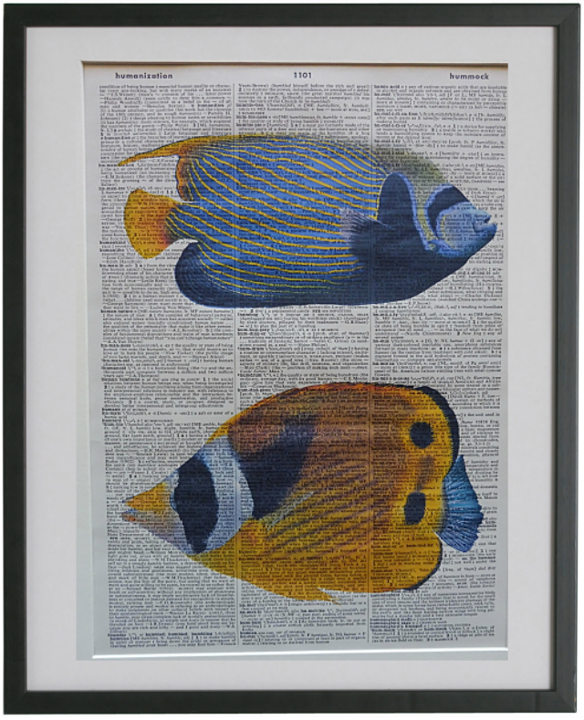 Tropical Fish Print No.629