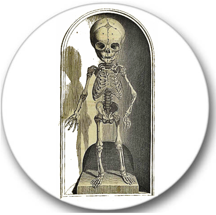 Skeleton Child Sticker Seals No.656, gothic