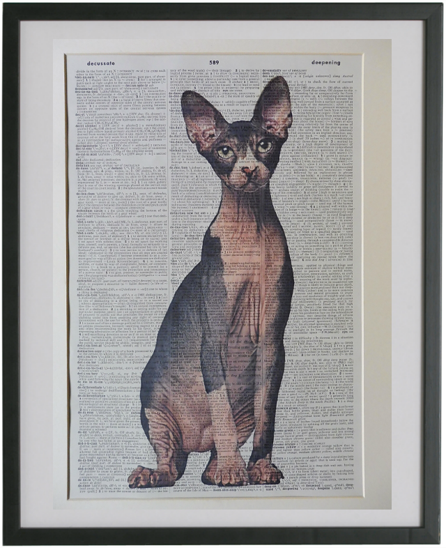 Sphynx Cat Wall Art No.763