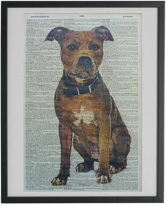 Staffordshire Bull Terrier Dog Print No.175