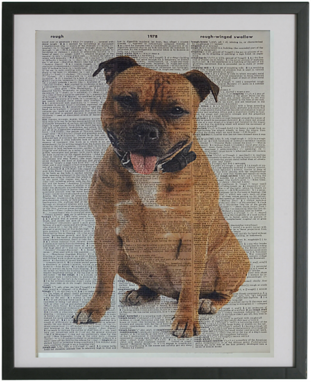 Staffordshire Bull Terrier Dog Print No.33