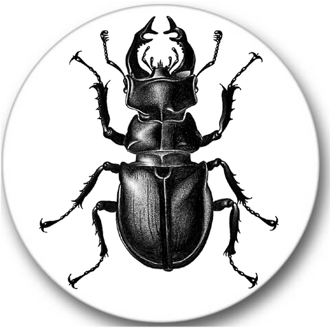 Stag Beetle Sticker Seals No.296