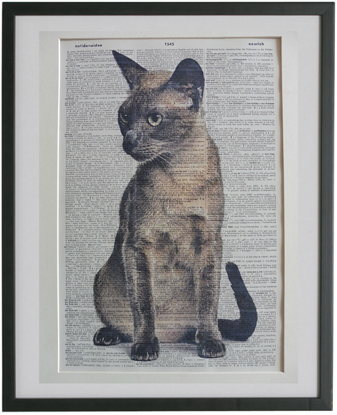 Tonkinese Cat Print No.920