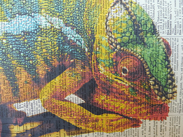 Chameleon Print No.383, animals