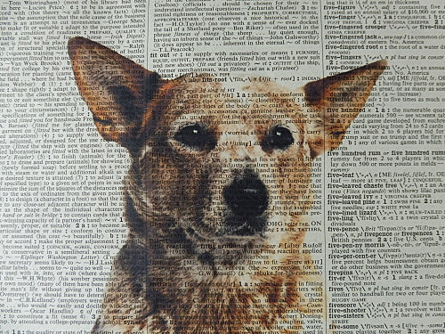 Red Heeler Dog #2 Wall Print No.414