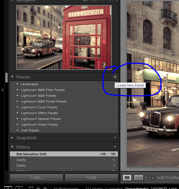 Click on the x next to Lightroom presets.