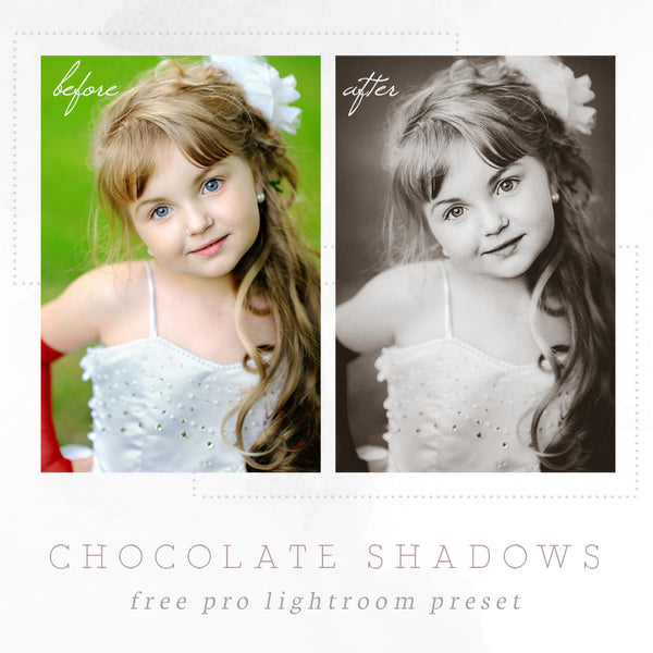 Wet plate chocolate shadows Lightroom preset