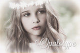 Opalotype Lightroom presets