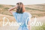 Dream Color Lightroom Presets