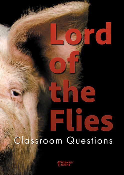 Lord of the Flies Classroom Questions at Magpie Books Enniskerry