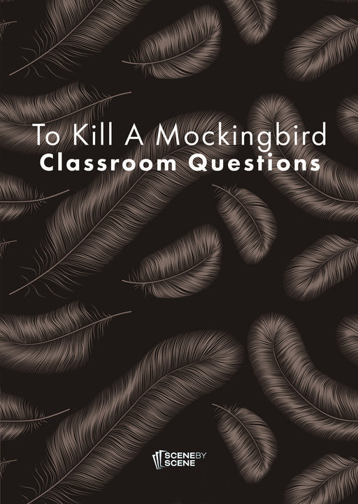 To Kill a Mockingbird Classroom Questions at Magpie Books Enniskerry - 1
