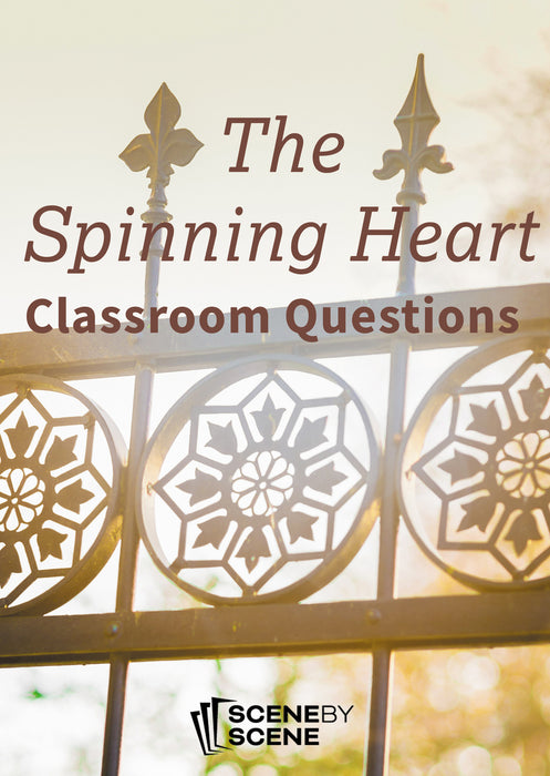The Spinning Heart Classroom Questions at Magpie Books Enniskerry - 1