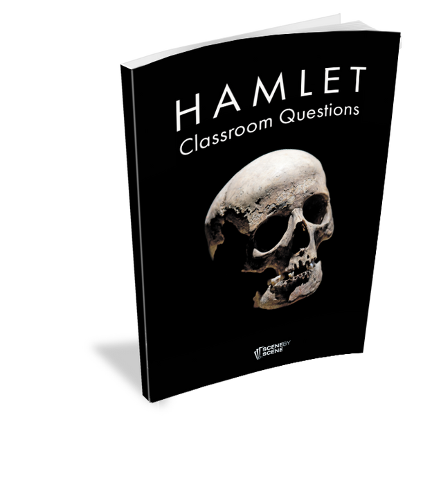 Hamlet Classroom Questions at Magpie Books Enniskerry - 2