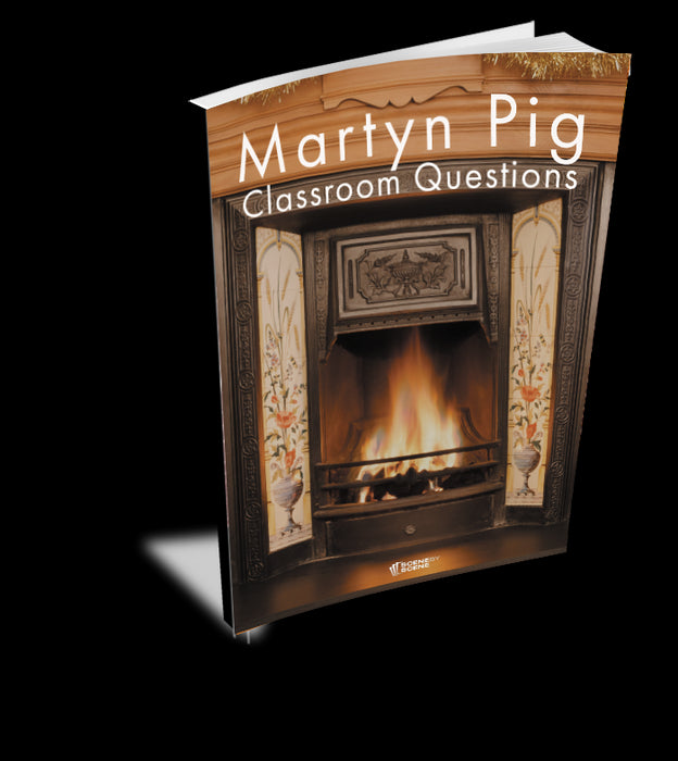 Martyn Pig Classroom Questions at Magpie Books Enniskerry - 2