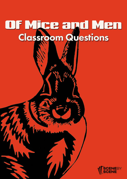 Of Mice and Men Classroom Questions at Magpie Books Enniskerry