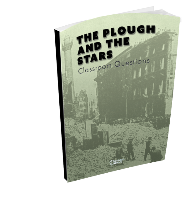 The Plough and the Stars Classroom Questions at Magpie Books Enniskerry - 2