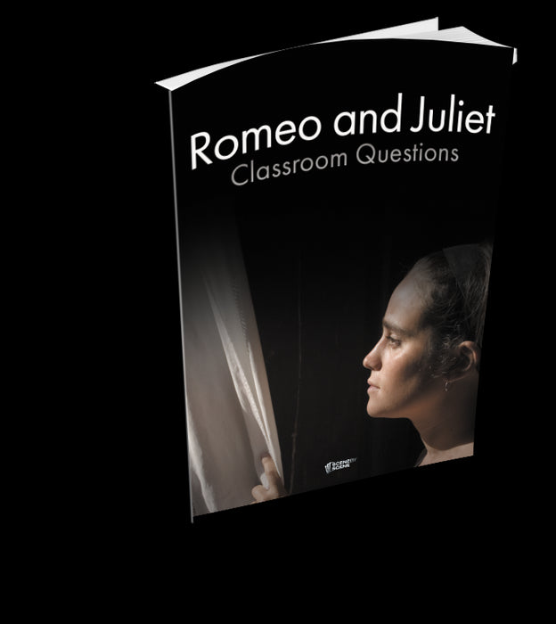 Romeo and Juliet Classroom Questions at Magpie Books Enniskerry - 2