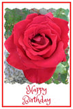 Birthday Greeting Card: Red Rose; Printed Text by PonsART $6.25 - PAMELA'S ART by PonsArt