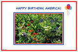 Americas Birthday Card: Blank inside by PonsART $6.25 - PAMELA'S ART by PonsART - a Gift Shop and Marketplace