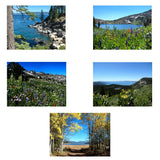 "Greeting Card Set: 5-pieces titled ""Landscapes"" by PonsART $21.95 - PAMELA'S ART by PonsART - a Gift Shop and Marketplace"