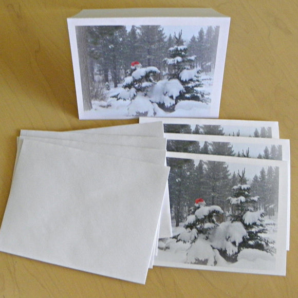 Holiday Note Cards: Printed Sets; by PonsART $12.95+ - PAMELA'S ART by PonsART - a Gift Shop and Marketplace