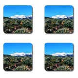Mountain Coasters Nevada: 4-pc. set by PonsART $20.00 - PAMELA'S ART by PonsART - a Gift Shop and Marketplace
