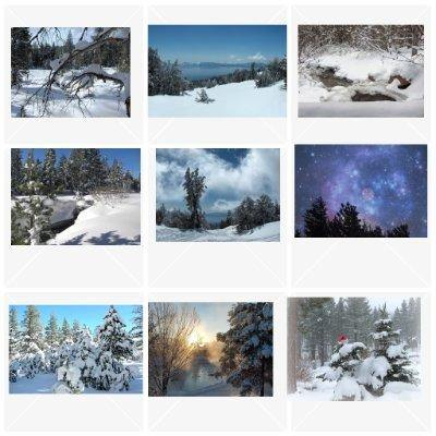 Snow Scene Cards: Blank; 9-pc. Set by PonsART $31.95 - PAMELA'S ART by PonsART - a Gift Shop and Marketplace