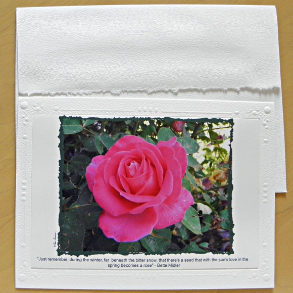 Winter Rose Greeting Card: Blank inside; by PonsART $6.25 - PAMELA'S ART by PonsART - a Gift Shop and Marketplace