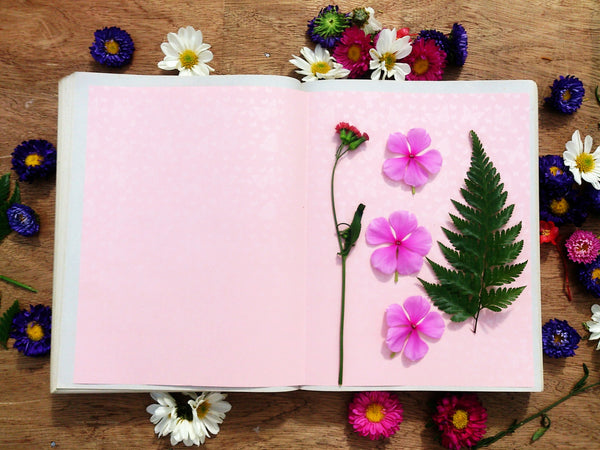 How to dry flowers yourself greetings of grace pressing flowers with an iron mightylinksfo