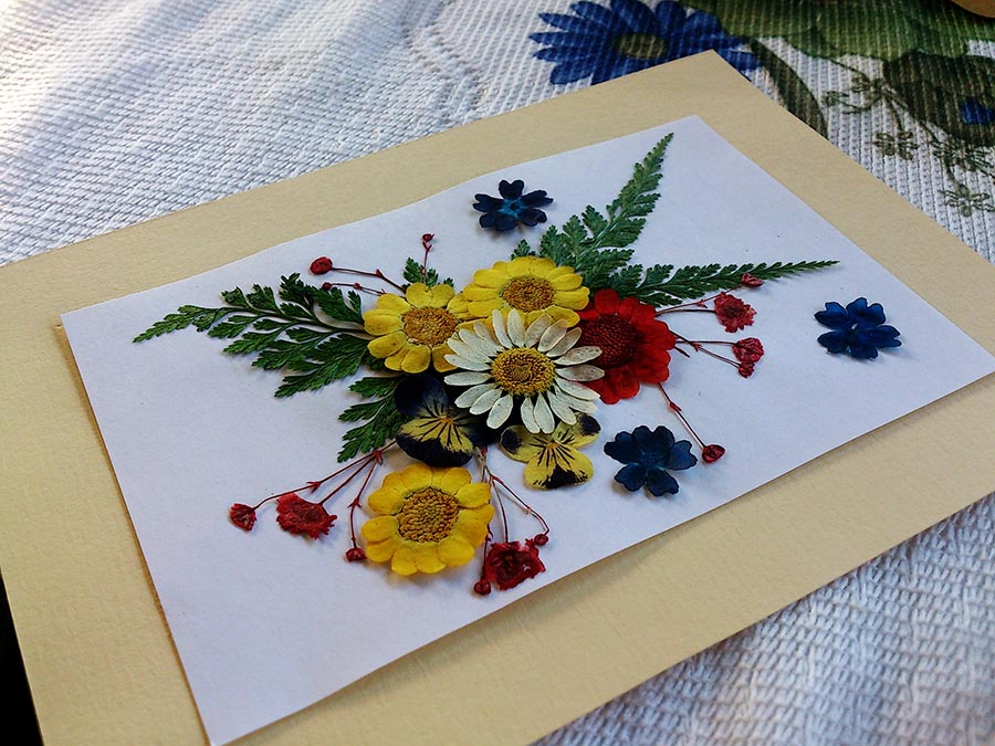 How To Frame Pressed Flowers Greetings Of Grace
