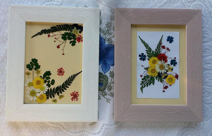 How to Frame Pressed Flowers – Greetings of Grace