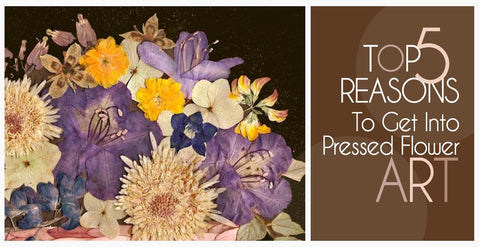 Top Five Reasons To Get Into Pressed Flower Art