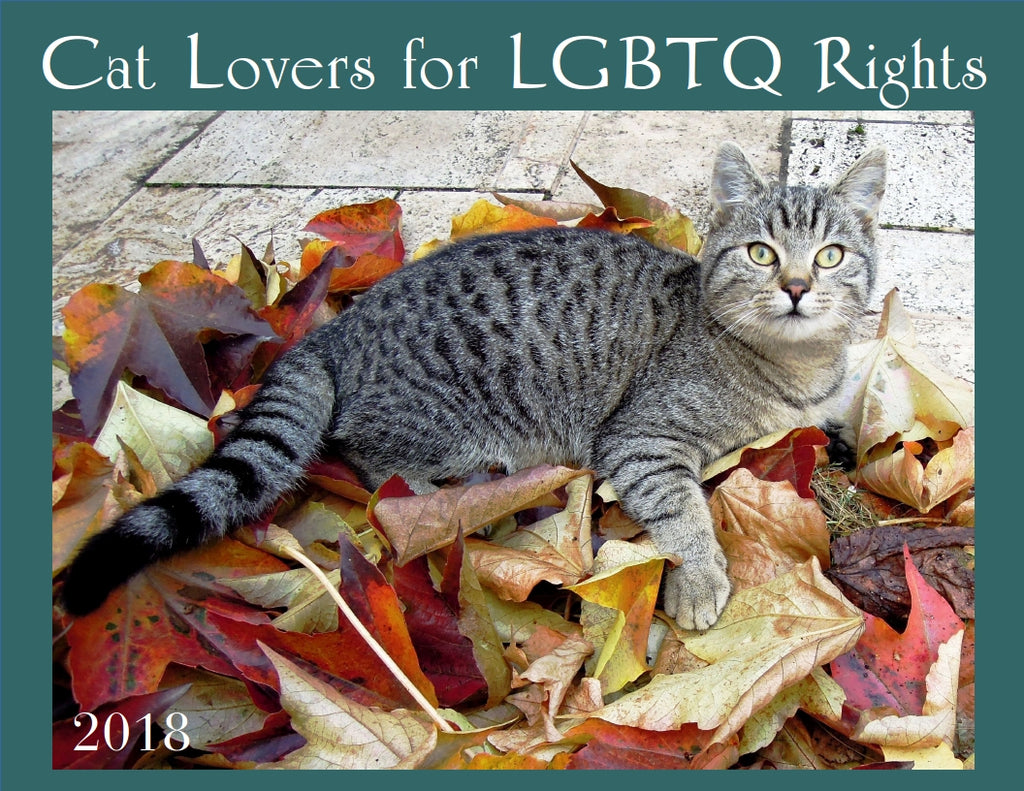 2018 Cat Lovers for LGBTQ Rights
