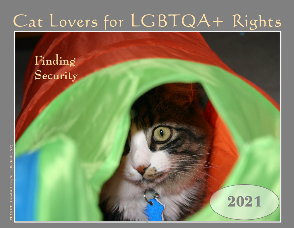 2021 Cat Lovers for LGBTQA+ Rights