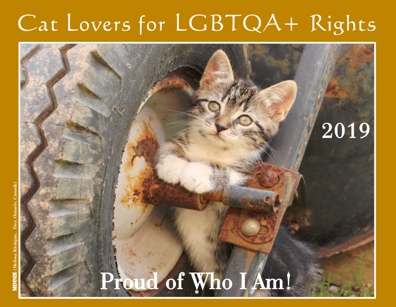 2019 Cat Lovers for LGBTQA+ Rights