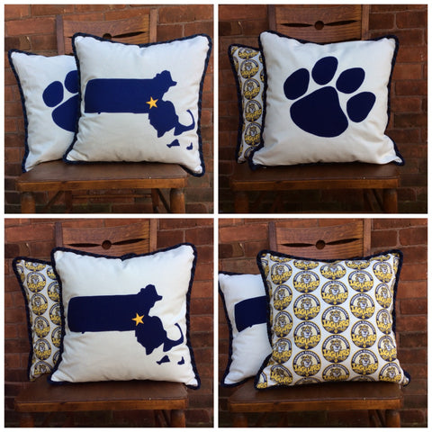 "Custom designed ""School Spirit"" pillows"