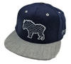 Colorado Mountain Goat | Flat brim